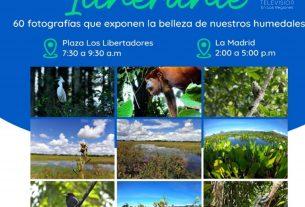 Con Galería Itinerante Y Conversatorios Con Expertos Se Celebra En Villavicencio El Día Mundial De Los Humedales