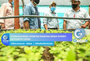 Cormacarena pone en marcha mega vivero en Puerto López