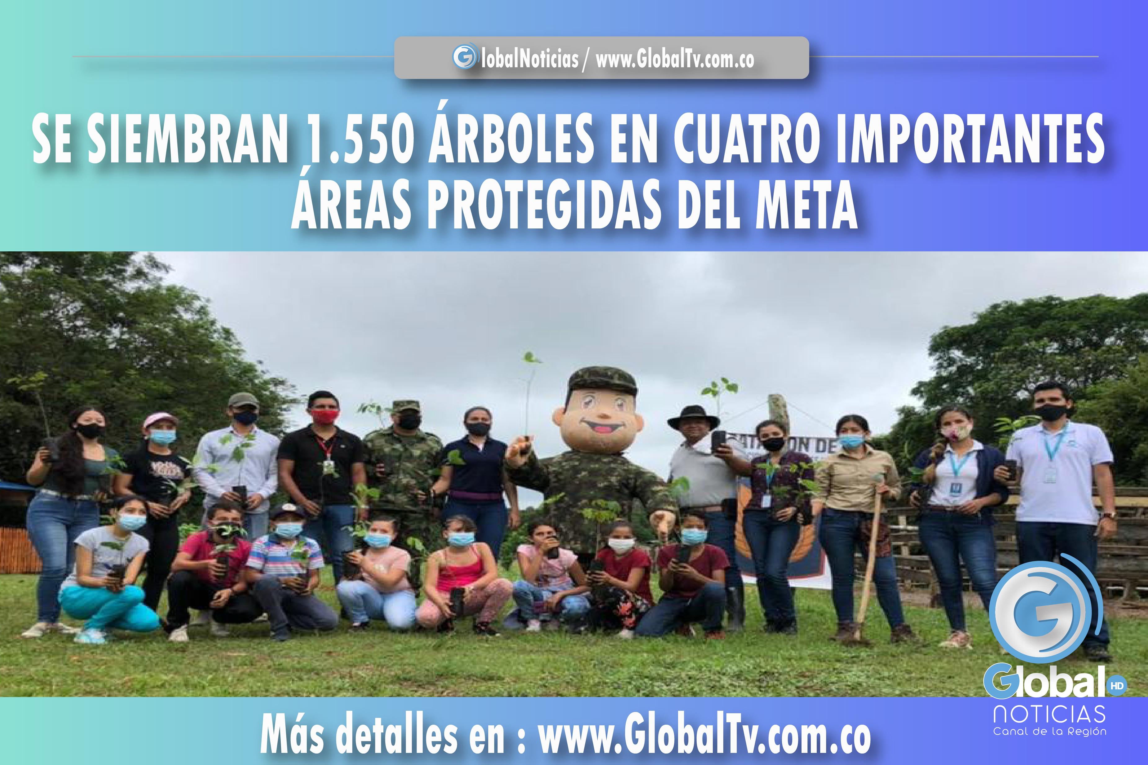 SIEMBRAN 1.550 ÁRBOLES EN CUATRO IMPORTANTES ÁREAS PROTEGIDAS DEL META